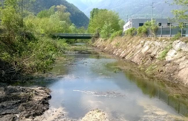 rio stronetta
