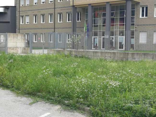 verde pubblico omegna