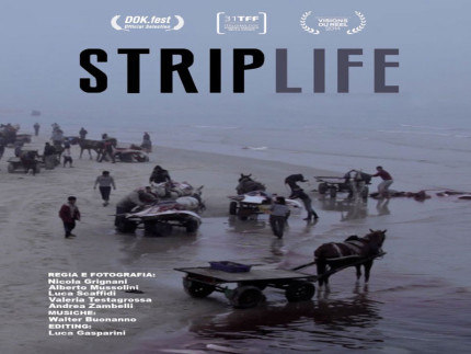 striplife gaza