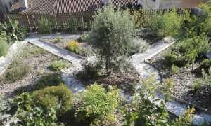 giardino semplici